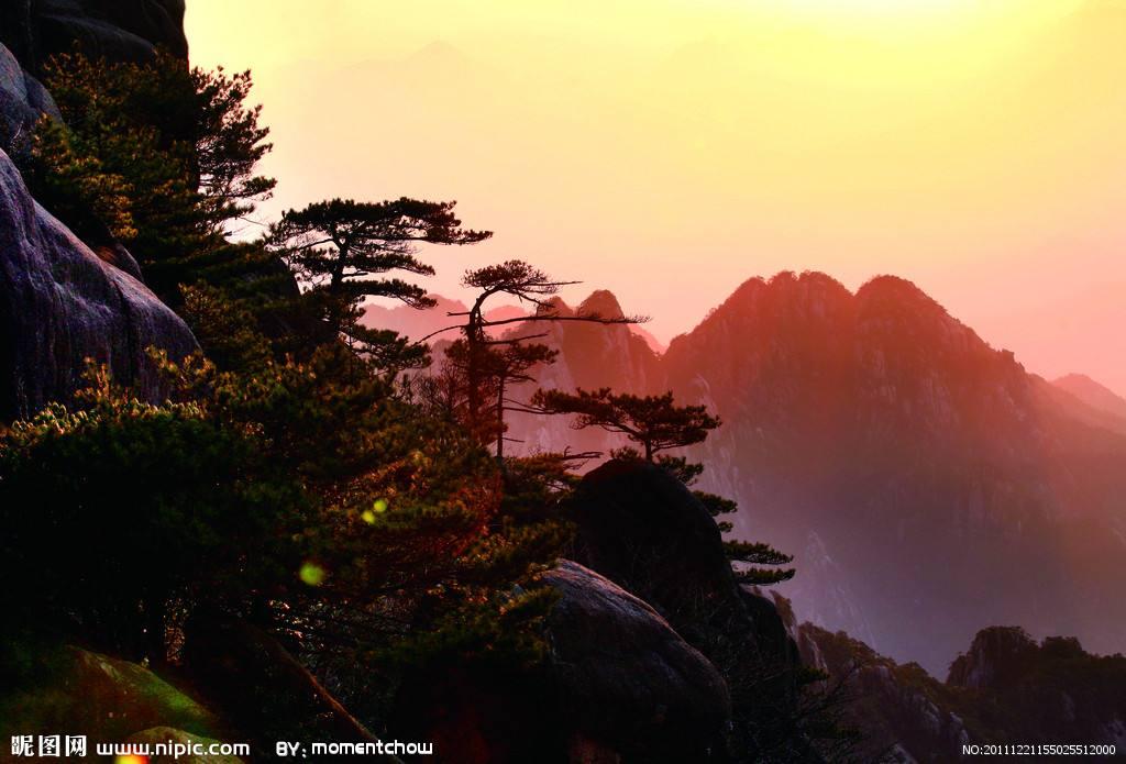 中国旅行证可以在香港入关吗