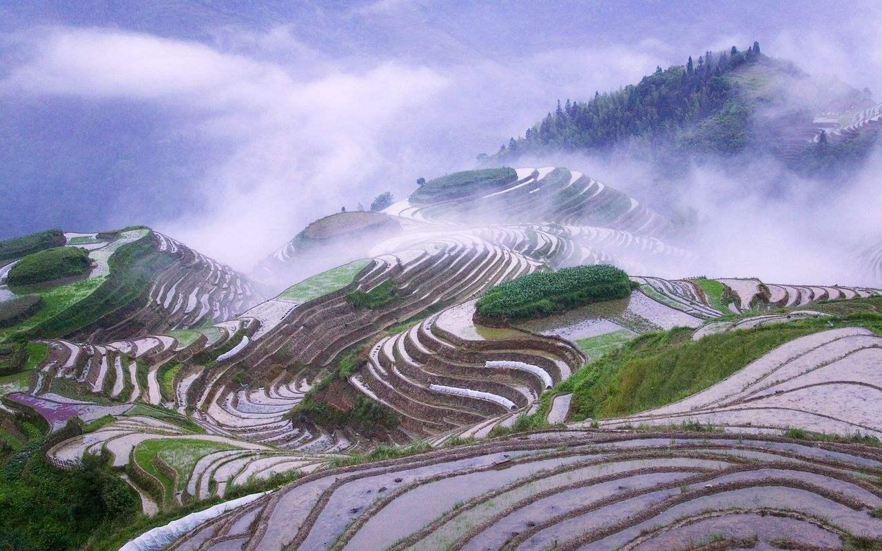 在中国境内可以办中国旅行证吗