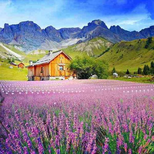 美宝在韩国哪里办中国旅行证